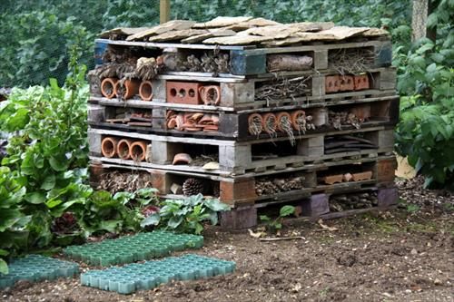 Insect and bee pallet hotel