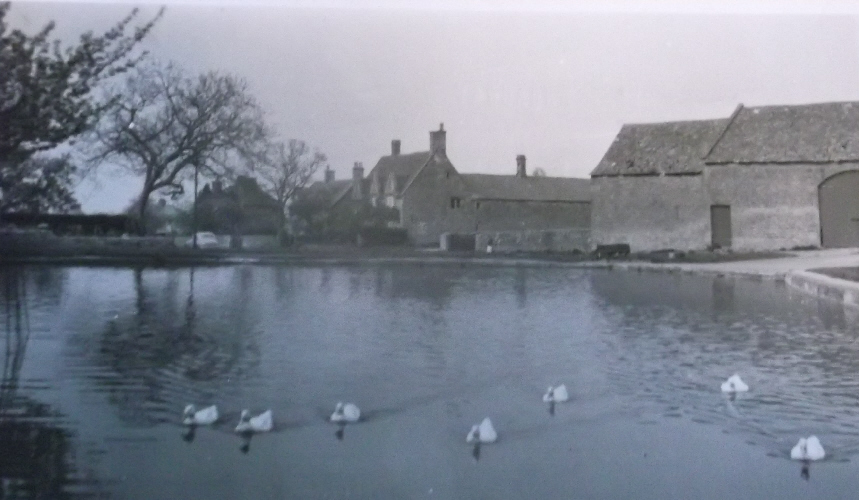 The duck pond in 1963