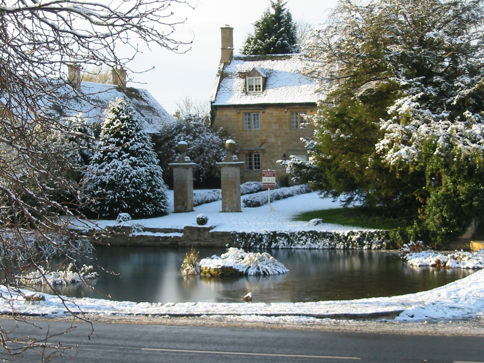 Duck pond in snow